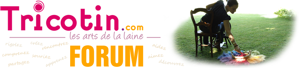 Forum Tricotin.com : TRICOT & ARTS DE LA LAINE